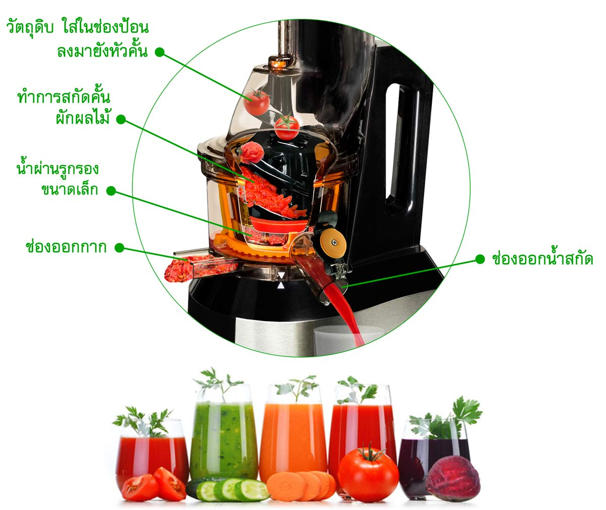 x ray slow juicer action